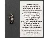 Мудрая Сова / Серебрение / Оберег в Кошелек
